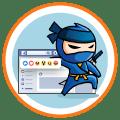 Facebook Ninja Ikon